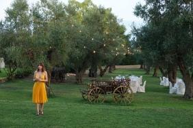 Cena tra gli ulivi