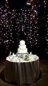 Fairy Lights Taglio Torta