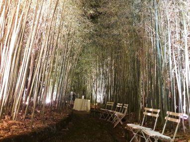 Giardini Castello Winspeare - Depressa